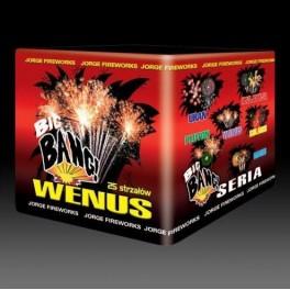 JW08 - Wenus
